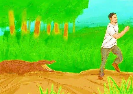 Bão Sally mang cá sấu 4m đến trước nhà. Michigan gồng mình chống viêm não ngựa.